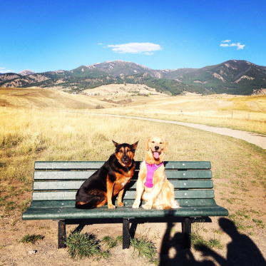 Westway-Studio-Jackson-Yellowstone-Bozeman-089