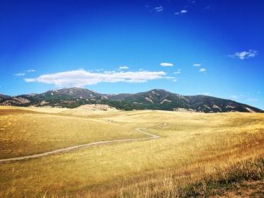 Westway-Studio-Jackson-Yellowstone-Bozeman-088