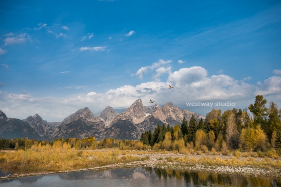 Westway-Studio-Jackson-Yellowstone-Bozeman-010b
