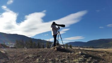 Westway-Studio-Jackson-Yellowstone-Bozeman-069