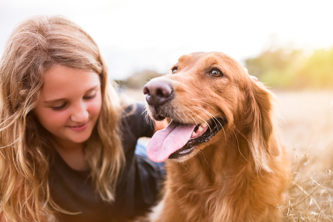 dog-supplement-food-emmert-commercial-dog-photographer-westway-studio-35