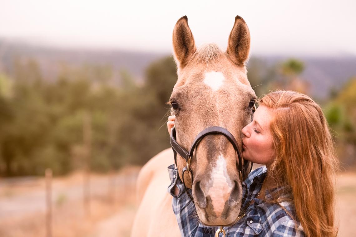 horse-supplement-showbloom-emmert-commercial-horse-livestock-photographer-westway-studio-37