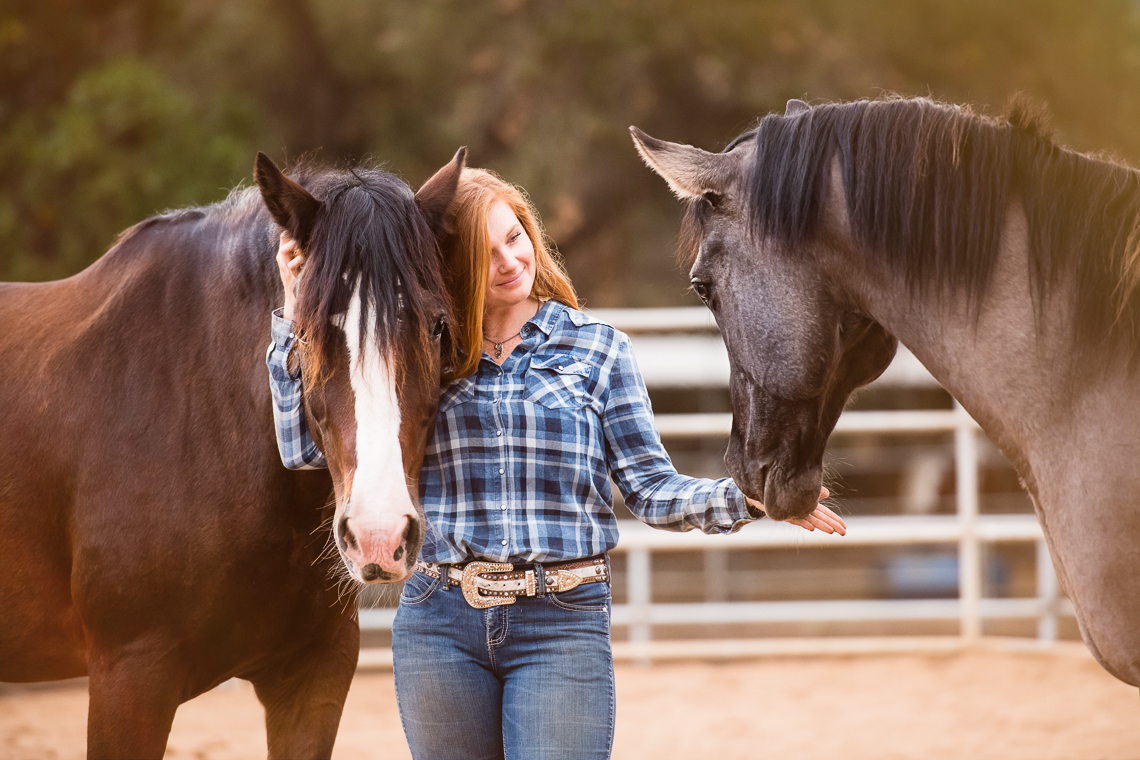 horse-supplement-showbloom-emmert-commercial-horse-livestock-photographer-westway-studio-42