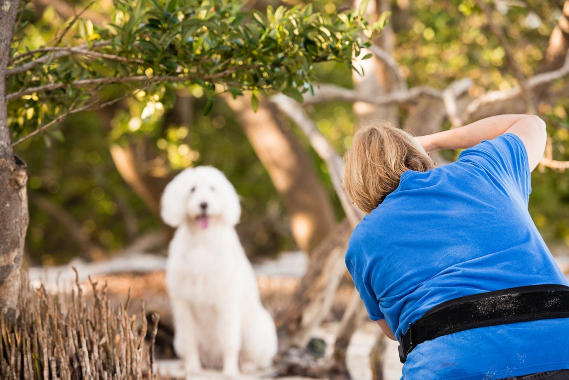 Westway Studio - Educational Retreat for Pet Photographers - 18