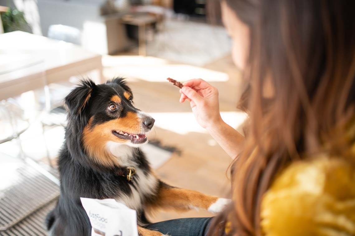 Westway-Studio-commercial-brand-lifestyle-dog-pet-photography-photographer-san-diego-orange-county-california-02