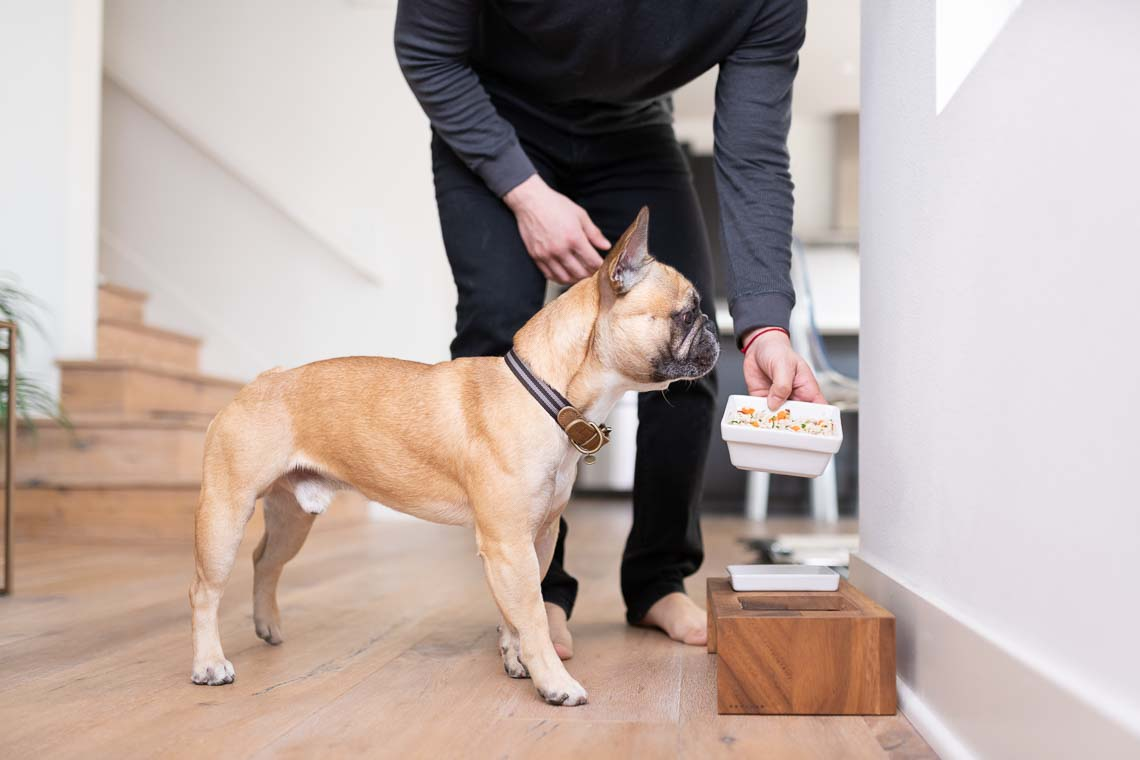 Westway-Studio-commercial-brand-lifestyle-dog-pet-photography-photographer-san-diego-orange-county-california-08