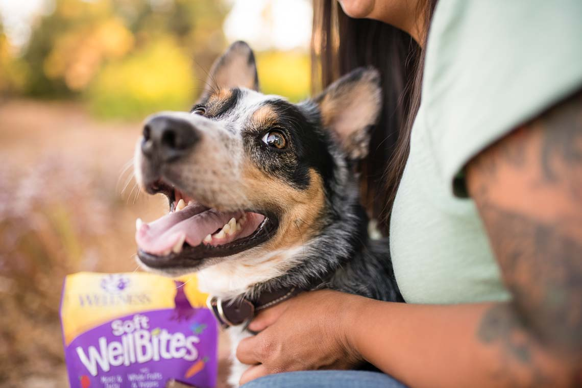 Westway-Studio-commercial-brand-lifestyle-treat-dog-pet-photography-photographer-san-diego-ca-04