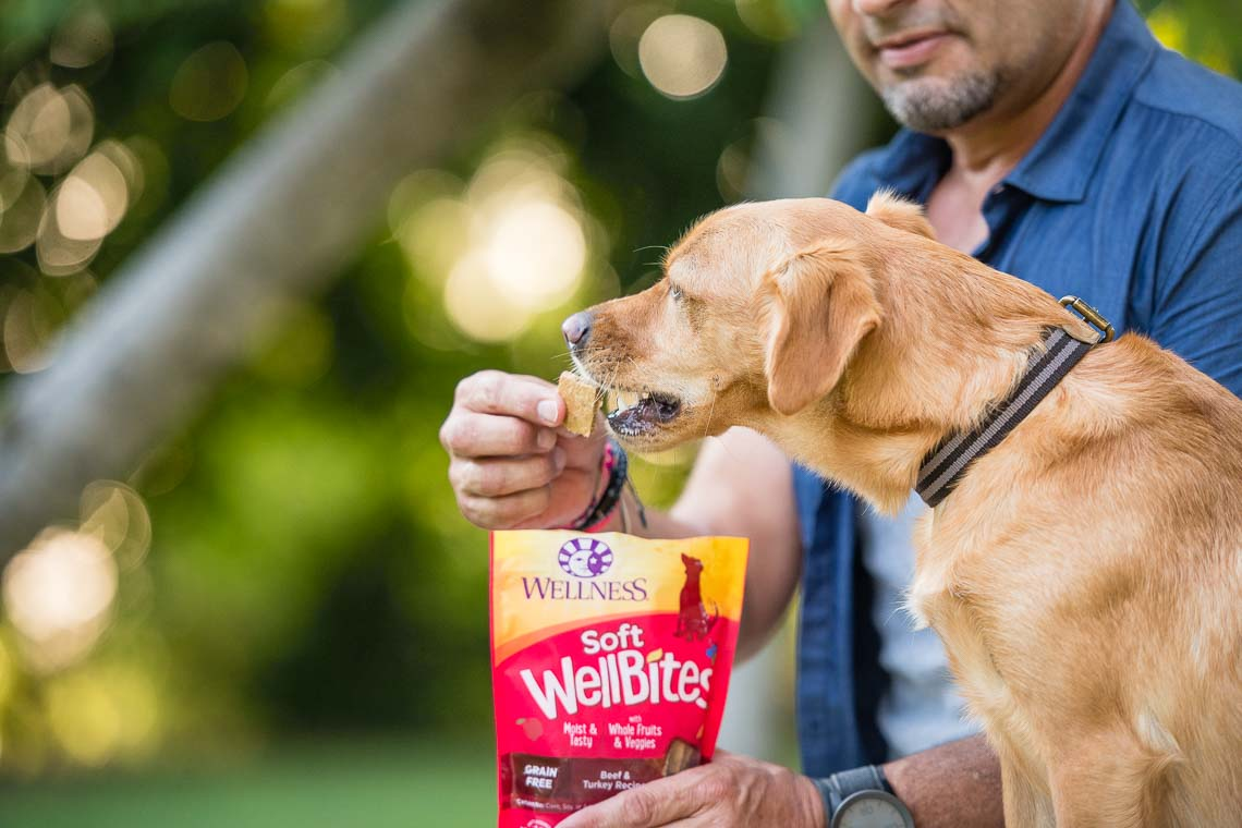 Westway-Studio-commercial-brand-lifestyle-treat-dog-pet-photography-photographer-san-diego-ca-08