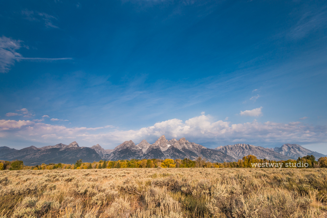 Westway-Studio-Jackson-Yellowstone-Bozeman-012