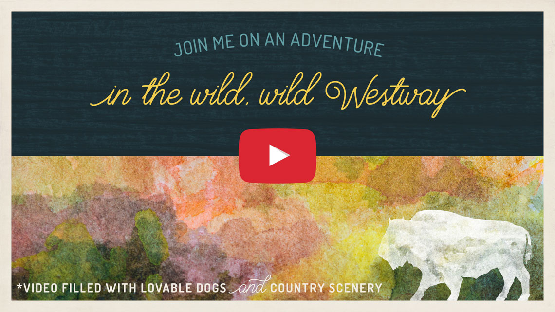 westway pets branding video