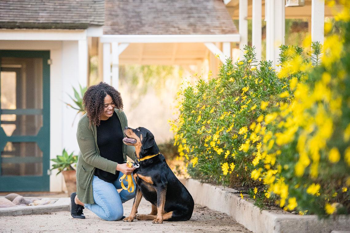 Commercial Pet Photographer // West Paw Shoot | Westway